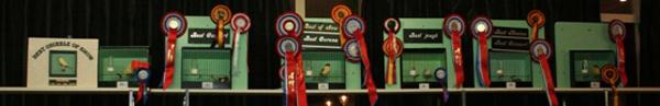 2011 Prijwinnaars ENGS 2