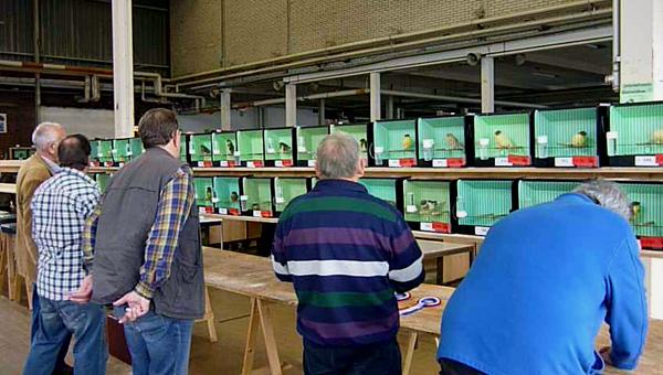 2012 Glosterdag Midden-Nederland keurmeesters