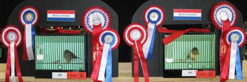 2013 Midden Nederland Beste corona en consort