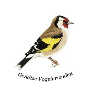 Logo GVV 300