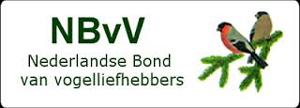 NBVV Logo