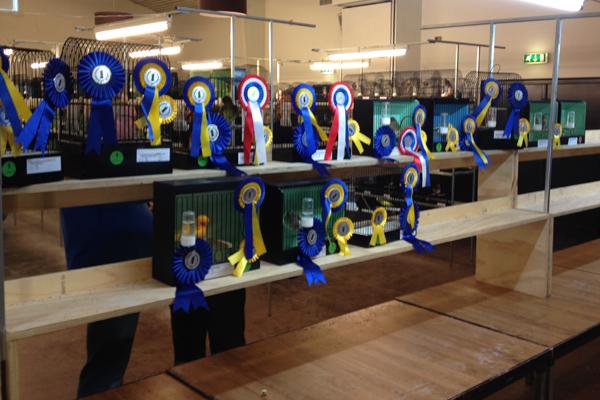2013 Klassewinnaars